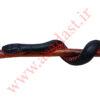 عصای کلکسیونی منبت کاری شده طرح مار مدل RedBelly Snake
